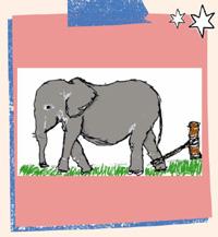 हाथी की रस्सी